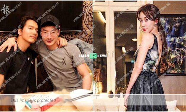 Lin Chi Ling announces she is single; Jerry Yan finally appears