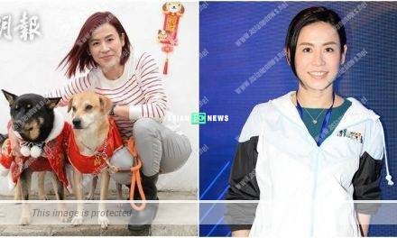 Jessica Hsuan feels mad when many dogs are left at the street