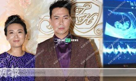 Michael Tse's wife is pregnant again