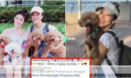 Tavia Yeung and Meini Cheung take their dogs for strolling