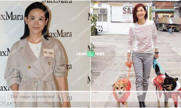 Busy Jessica Hsuan seldom spends time with her dogs