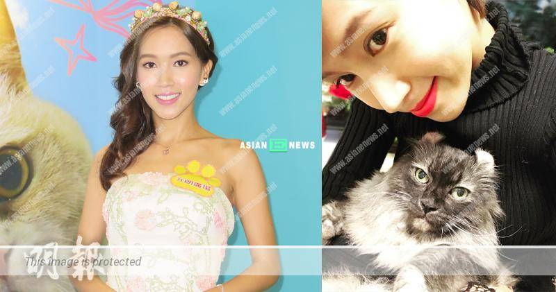 Kelly Fu knows her cat dislikes the name, BeBe and she continues with it