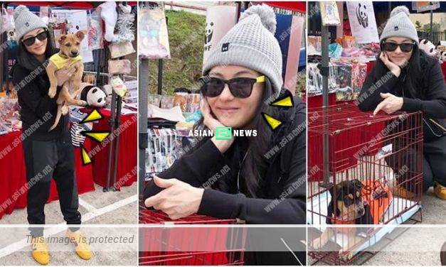 Cecilia Cheung is dressed up conservatively and gains some weight