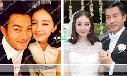 Hawick Lau and Yang Mi filed for divorce in Canada 2 months ago?