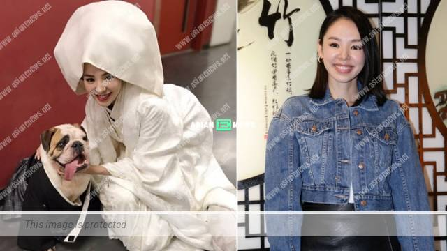 Zoie Tam treats her boyfriend as marriage partner; She might go for flash marriage
