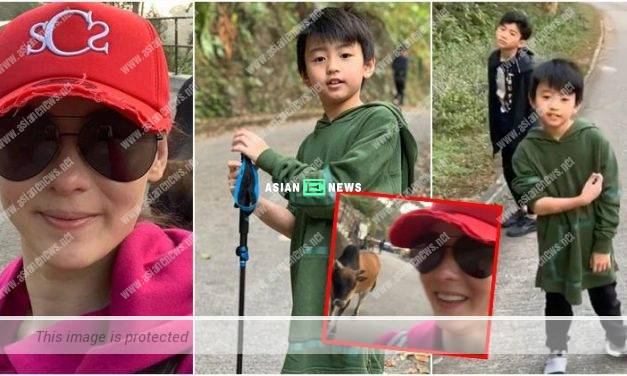 Cecilia Cheung and her sons saw a cow when going for hiking