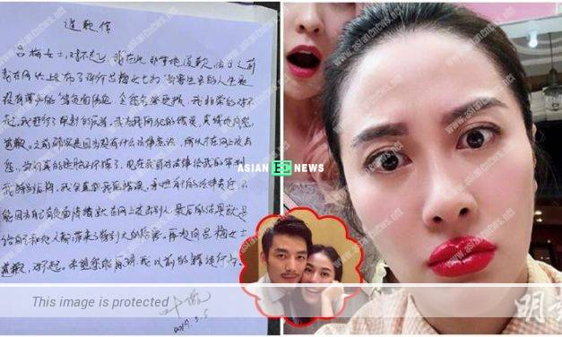 Michelle Ye lost the case and apologised to Mr Mo's old love