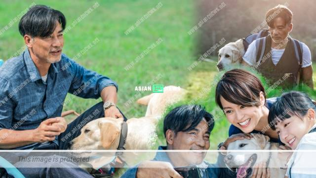 Little Q film: Simon Yam was too focused due to the close bonding with the guide dog