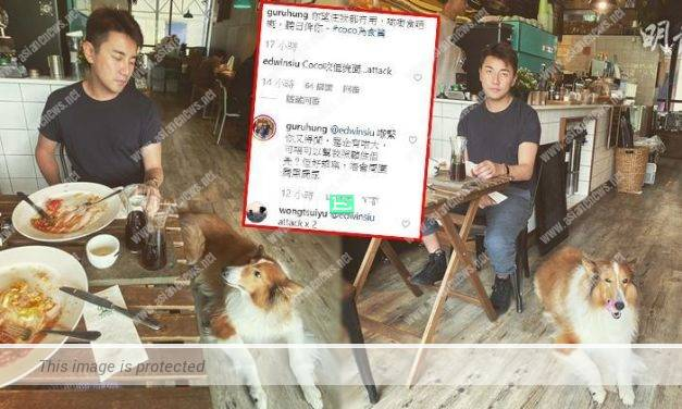 Edwin Siu and Priscilla Wong told Tony Hung's dog to attack him