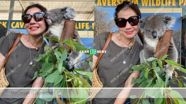 Too charming? Cherie Chung took photos with Koala at a close distance