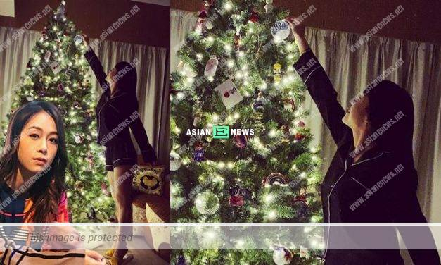 In a happy mood? Jacqueline Wong decorated Christmas tree at home