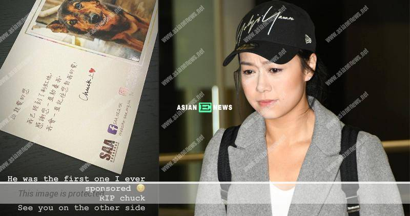 Jacqueline Wong felt sad when the first dog that she sponsored passed away