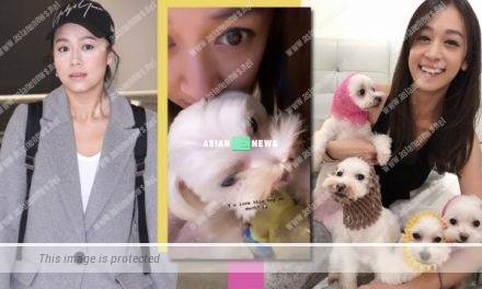 Scarlett Wong played with her dogs after Jacqueline Wong's return
