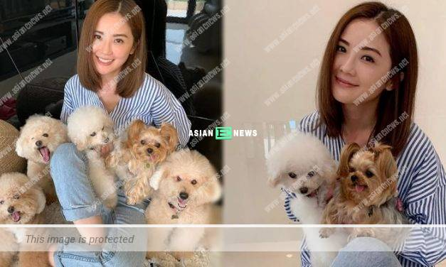 Charlene Choi visits 5 dogs at her mother's house