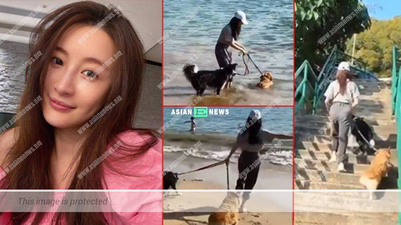 Rosina Lam is drenched when taking her dogs to the beach