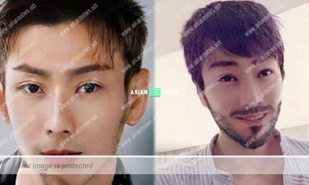 Resembling Vanness Wu? Sammi Cheng plays with face transformation application