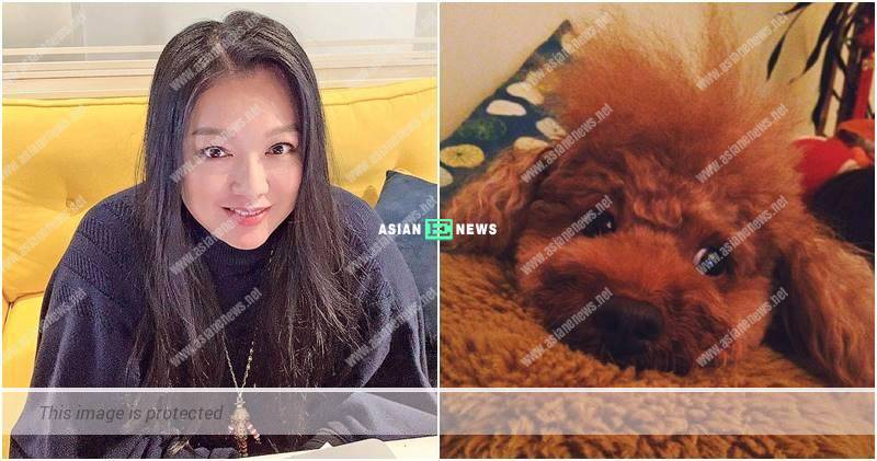 Lee San San misses her beloved dog which passed away for 7 years