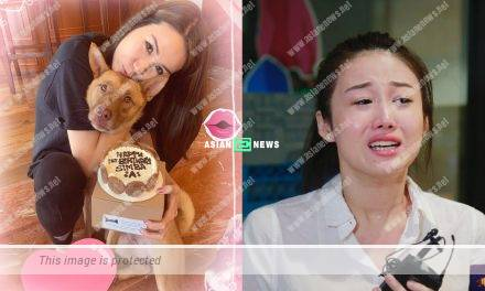 "Because of Matt Yeung? Lisa Chong is suspected to criticise Katie Hui as a ""clown"""