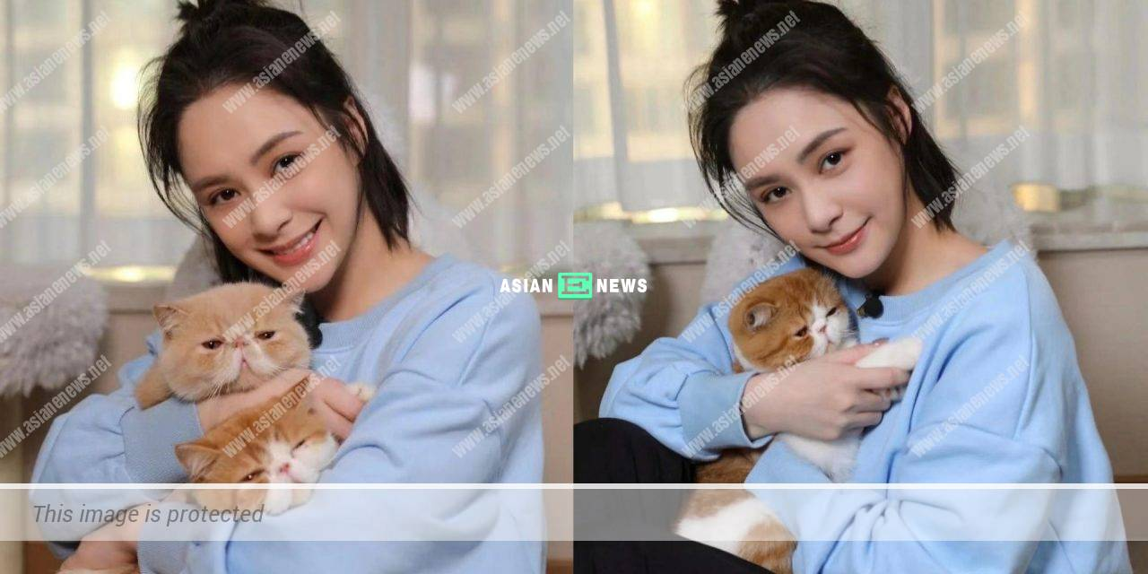 """Gillian Chung loses weight; She describes herself as """"cat slave"""""""
