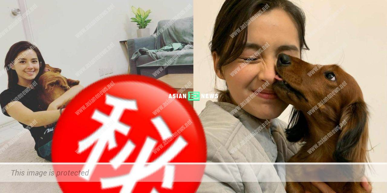 Lisa Marie Tse exercises together with her dogs at home