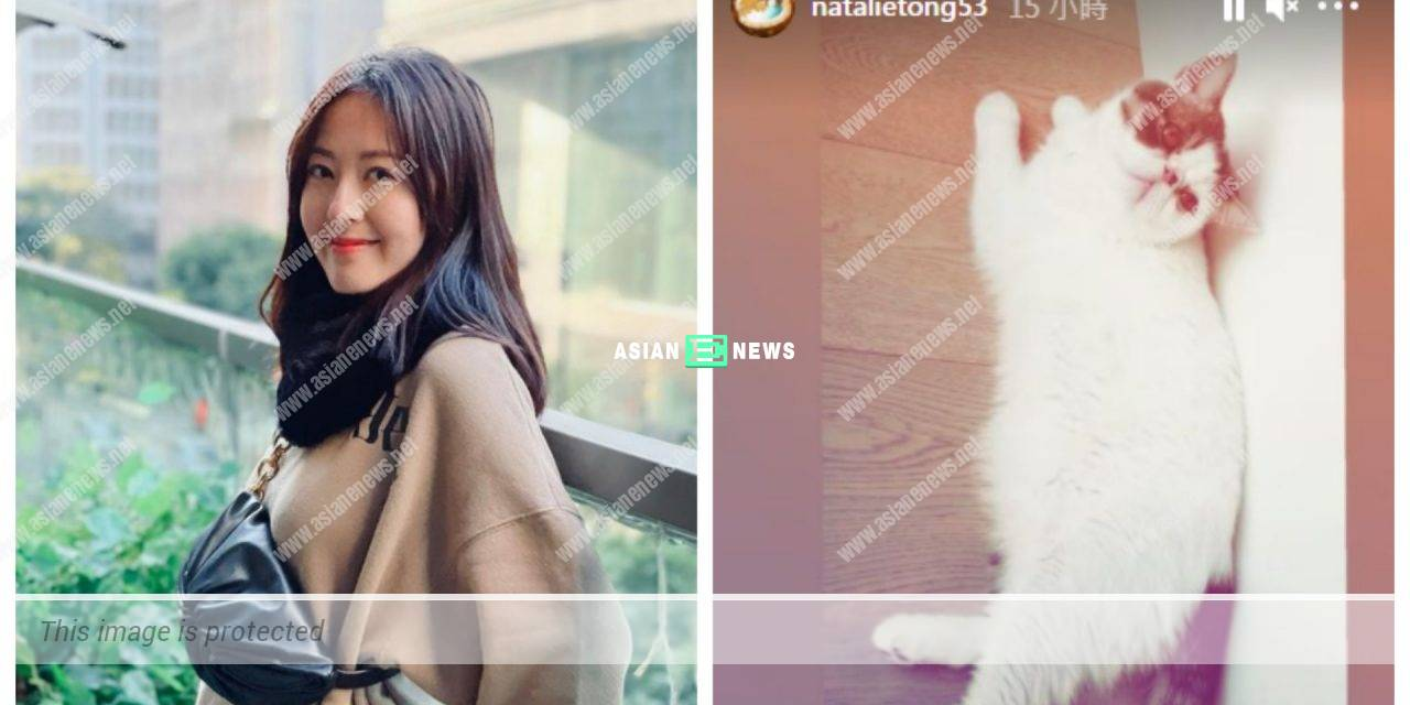 Natalie Tong is under quarantine in China; She worries about her cat's health