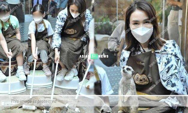 Gigi Lai takes her daughters to see meerkats at Ocean Park