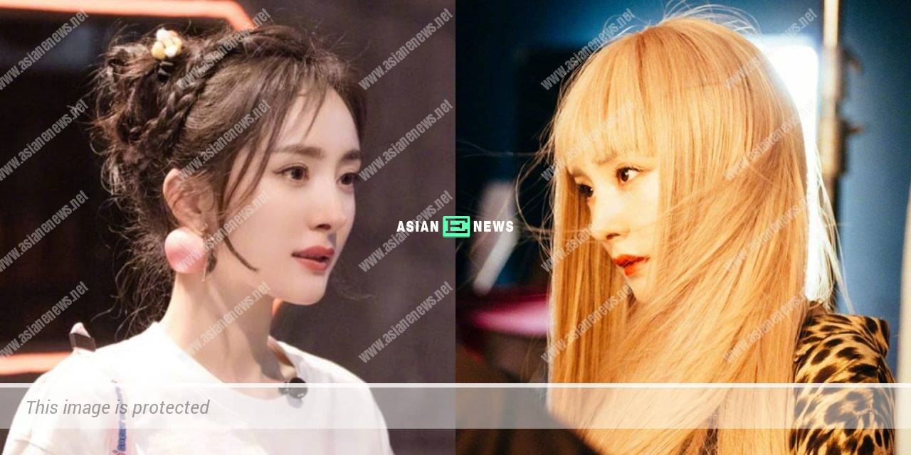 Yang Mi's new hairstyle resolves her hair problem?