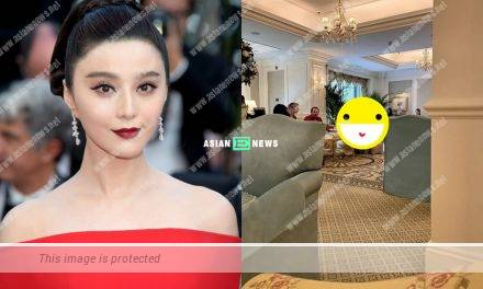 Chinese star Fan Bingbing's hair quality earns the envy of the netizens