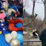 Huang Xiaoming is absent again; Angelababy held a birthday party for her son